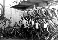 Inside Philader Barcaly's Bicycle Repair Shop, c. 1902
