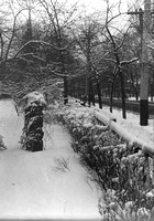 The fence of the Austin Estate in winter, date unknown